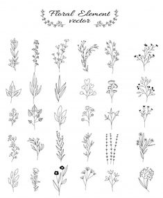 Flower and leaves set for wedding, flower shop, hand drawn style Premium Vector Flower Art Drawing, Flower Sketches, Floral Drawing, Simple Flower Drawing, Mini Tattoos, Cute Tattoos, Flower Tattoos, Small Tattoos, Bullet Journal Writing