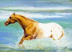Wave Runner, original painting by Sara Cuthbert. Water Colour on paper. Appaloosa stallion. Visit saracuthbert.com