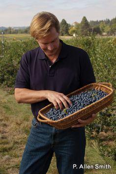 P Allen Smith: berry good tips for growing blackberries, raspberries  blueberries