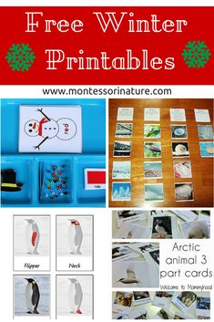 Montessori Nature: Free Winter Printables for Kids - KLP Linky Party Montessori Preschool, Preschool Curriculum, Teaching Activities, Winter Activities For Kids, Montessori Materials, Winter Theme, Kids Education, Polar Animals, Inspiration