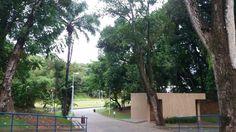Parque da cidade em Salvador Bahia,muito lindo
