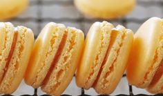 French macaroons are meringue-based cookies that use ground almonds, far different than the North American macaroon, a chewy coconut cookie. Macaroons do take Sugar Cookies Recipe, Cookie Recipes, Macaroon Filling, Anna Olsen, French Macaroons, Snacks To Make, Macaron Recipe, Biscuit Recipe, Sweet Cakes
