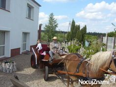 Poland, Antique Cars, Horses, Memories, Antiques, Vehicles, Animals, Vintage Cars, Memoirs