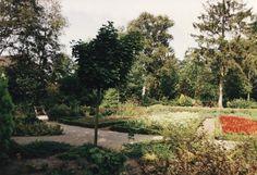 Serie van 5 foto's van het plantsoen aan de Felicitestraat in Lierop. 1992