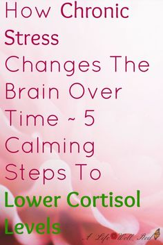 Chronic Stress Changes The Brain Over Time ~ 5 Calming Steps To Lower Cortisol Levels