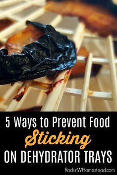 - 5 Ways to Prevent Food from Sticking to Dehydrator Trays Do you have a problem with food sticking to dehydrator trays? Here are 5 ways to prevent it and what to do if you find yourself with a ruined batch. Canning Food Preservation, Preserving Food, Dehydrated Vegetables, Dehydrated Food Recipes, Canned Food Storage, Jerky Recipes, Dehydrator Recipes, Brunch, Canning Recipes