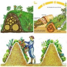 """Permaculture gardening - Hügelkultur (German, meaning """"hill culture"""" or """"mound culture"""") is the garden concept of building raised beds over decaying wood piles Building Raised Beds, Potager Bio, Organic Farming, Organic Gardening, Vegetable Gardening, Natural Farming, Indoor Gardening, Plantation, Dream Garden"""