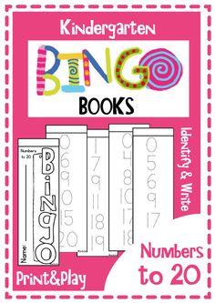 Kindergarten Bingo Books Numbers to 20 $