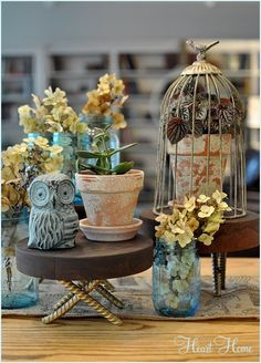 Stocky stump slices elevate your favorite tchotchkes (or desserts!) to new, super-cute heights.