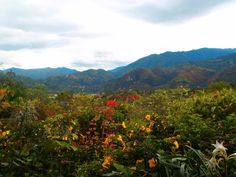 """The travel blogger began her trip in Vilcabamba, a picturesque village in the south of the country that's known as the """"Valley of Longevity."""" It is home to """"one of the longest living populations in the world,"""" Festa said, thanks to its """"natural mineral water and fresh mountain air."""" There are also plenty of """"budget-friendly spas, meditation and yoga centres, and healthy eateries in town."""""""