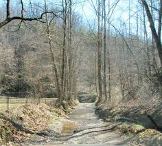Pinterest country roads | Photo of the Day: Country Road Take Me Home…in a 4 Wheeler ...