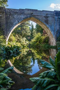 Kildrummy Castle Gardens © Readytotack | Reflecting all that is beautiful |