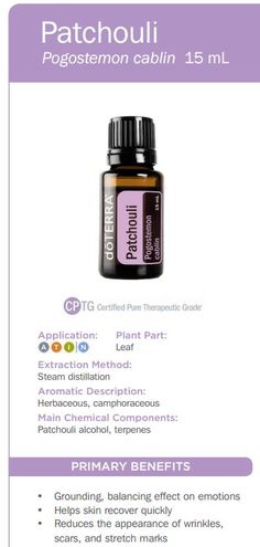 doTERRA Coriander Essential Oil Uses with Recipes - Best Essential Oils Essential Oils For Nausea, Melaleuca Essential Oil, Marjoram Essential Oil, Cypress Essential Oil, Patchouli Essential Oil, Essential Oil Uses, Doterra Essential Oils, Doterra Blends, Doterra Citrus Bliss