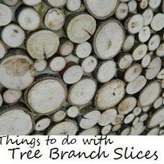 Ideas for Decorating with {Tree Branch Slices!}
