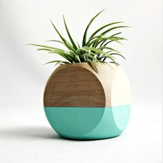 Kinda obsessed with this planter from seaandasters.etsy.com {now if I could only keep a plant alive!}