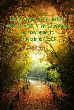 Proverbios 12:28