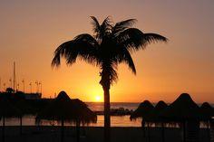 Reisebericht über Kanarische Inseln: http://wp42.hkv-sh.ch/kanarische-inseln-spanien/