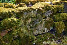 Moss on stone | Moss On Stone Wall Stock Photography - Image: 8504832