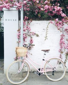 Pretty pink blossom and pink bike - perfect for a spring day. Vintage Clipart, Vintage Art, Vintage Dior, Vintage Stuff, Vintage Love, Watercolor Flower, Spring Aesthetic, Aesthetic Japan, Aesthetic Plants