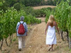 Co-founder of Bella D'Oliva LA Marchesi walking through an olive grove in Tuscany, Italy