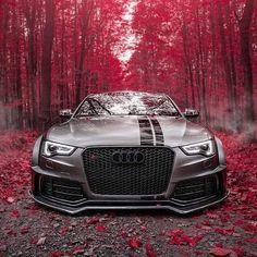 New ideas audi cars models autos Audi S5, Audi Sport, Sport Cars, Audi Car Models, Audi Cars, Ferrari Car, Cars Auto, Bmw Suv, Lamborghini Gallardo