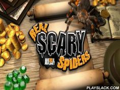 Real Scary Spiders  Android Game - playslack.com , In the game Real scary spiders a real arachnid becomes your rival animal. provided , compete and train your brand-new friend.