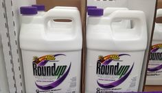 Roundup Linked To Health Dangers In New Study