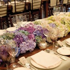 Color variety in hydrangeas, especially like the lavender, blue, sage, and white tipped lavender