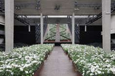 Stage design at Dior Spring-Summer 2016 Men Fashion Show #PFW #RTW #SS16 #Dior #LVMH
