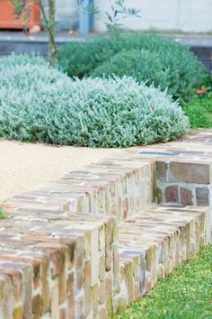 Front retaining wall around driveway? with painted brick? Photo (c) Brett Boardman Spirit Level recycled brick stairs Back Gardens, Outdoor Gardens, Landscape Design, Garden Design, House Landscape, Brick Garden Edging, Garden Retaining Walls, Brick Wall Gardens, Brick Steps