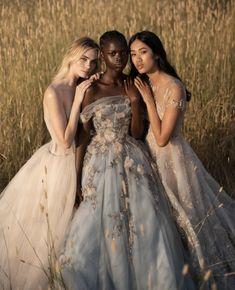 Ball Gowns Evening, Ball Gowns Prom, Ball Gown Dresses, Dress Robes, Lace Evening Dresses, Fairytale Dress, Fairy Dress, Fairytale Cottage, Fairytale Fashion