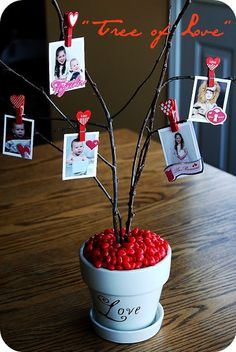 Make a Valentine 'Tree of Love' featuring photos of your loved ones. It's elegant and fun to create.