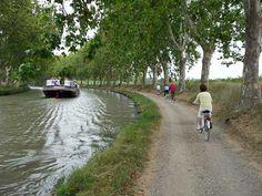 Bike or walk along the towpaths