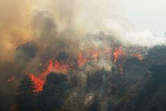 Fire crews watch as flames climb Williams Canyon during the Soberanes Fire near Carmel Valley, California July 30, 2016