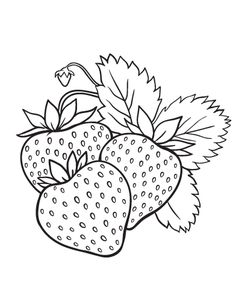 Printable strawberry coloring page. Free PDF download at http://coloringcafe.com/coloring-pages/strawberry/.
