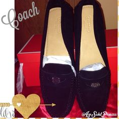 "HP Coach Nicola Penny-Style Loafers Host Pick 12/5/14Soft and supple suede ""penny"" style loafers from Coach feature a silver Signature C disc instead of a penny! Cushioned insoles so it feels like you're walking on air! ***NWT*** stored in original box. Coach Shoes Flats & Loafers"