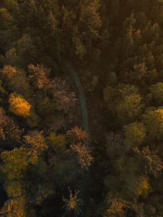 60 Lightroom Presets for Aerial Landscape Photography with drones like the DJI Mavic 2 Pro/Zoom, Mavic Air or Phantom Forest Photography, Aerial Photography, Landscape Photography, Travel Photography, Pictures Images, Free Pictures, Cool Pictures, Aerial Drone, Lightroom Presets