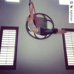 Sweet combo! #beastlybuilt #aerialacrobatics #aerialfitness #aerial #aerialistofig #aerialist #aerialhoop #aerialarts #aeriallyra #aerialaddict #lyracombo #lyrahoop #lyrahooptraining #hoop #acro #hoopart #hoopdance #transitions #circusfitness #circustrick #circuscircus #circuseverydamnday #circusarts #circuslifestyle Repost @kgfulmer ・・・ Yay! Lyra day #aerialhoop #cerceau #cerceaux #lyra #aerial #aerialist #aerialacrobat #acrobatics #circusinspiration