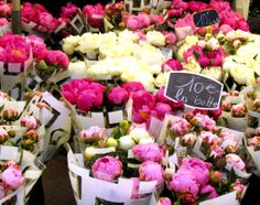 Every Tuesday, Thursday, and Saturday morning in Aix, the Place de l'Hôtel de Ville is covered in a sea of roses, peonies, dahlias, and other floral delights - love the big Saturday market...