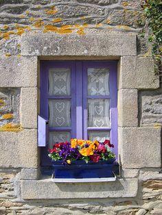 finestra fiorita