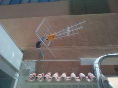 Instalacion junto con cableado de equipo y colocacion de antena.