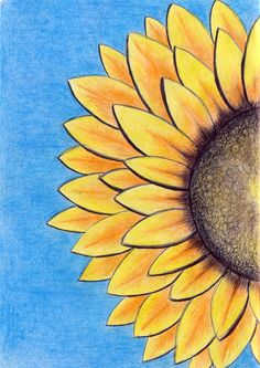 Sunflower - coloured pencil & pen some of my own work in 201 Pencil Sketches Easy, Disney Drawings Sketches, Pencil Drawings Of Girls, Art Drawings For Kids, Art Drawings Sketches Simple, Pencil Art Drawings, Colorful Drawings, Pencil Colour Painting, Colour Pencil Shading