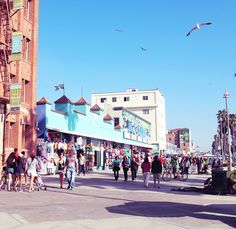 Venice Beach, one of the book's many iconic locations. Great for people watching.