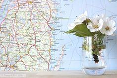 Moving to Sweden || nine months in — Emmy + LIEN