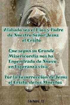 1 de Pedro, 1:3 - Alabado sea el Dios y Padre de nuestro Señor Jesús, el Cristo, que según su grande misericordia nos ha engendrado de nuevo en esperanza viva, por la resurrección de Jesús, el Cristo, de los muertos