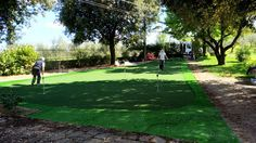 Artificial Turf, Grass, Sidewalk, Astroturf, Grasses, Side Walkway, Walkway, Walkways, Herb