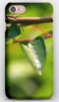 iPhone 7 Case Branch,  drops, Dew