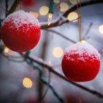 I'm Dreaming of a Minimalist Christmas