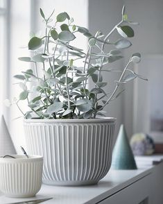 Buy Kahler Hammershi Flower Pot Light Grey Now at Dotmaison. Quality designer homewares & Free UK delivery over House Plants Decor, Plant Decor, Flower Vases, Flower Pots, Flowers, Pot Lights, Clay Vase, Bedroom Plants, White Vases