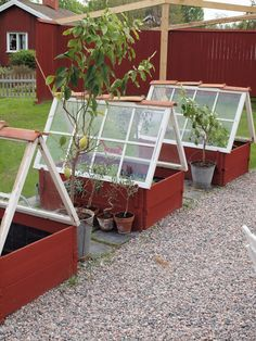 While these cute greenhouses don't come with a tutorial, we're inspired just by looking at them. Unlike the other repurposed window greenhouses we've seen, they use flower beds as bases.